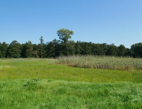 Luister de podcast van Astrid Dekkers over het Korenburgerveen in WOII